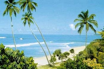 Замечательный отдых на курортах Шри-Ланки