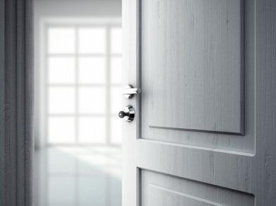 Межкомнатная дверь Новый стиль