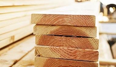 Выбор древесины при строительстве