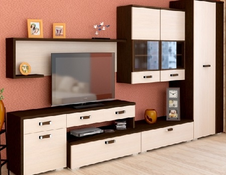 Выбор мебели для комнаты: стенка