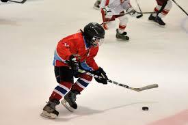 обучение игры в хоккей